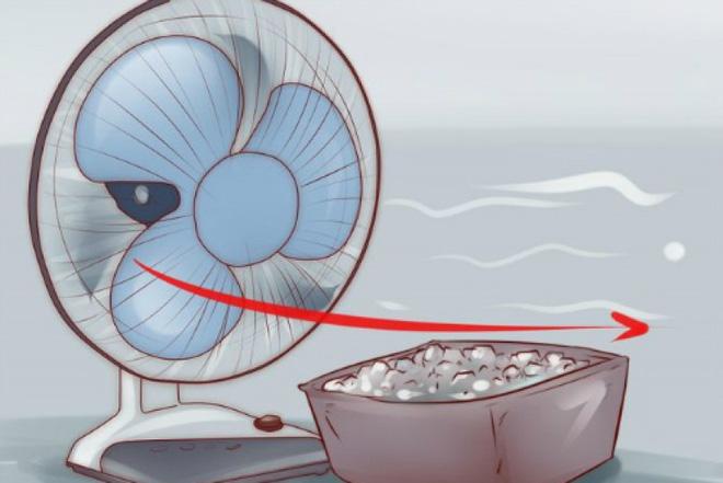 Sử dụng quạt và quạt phun sương