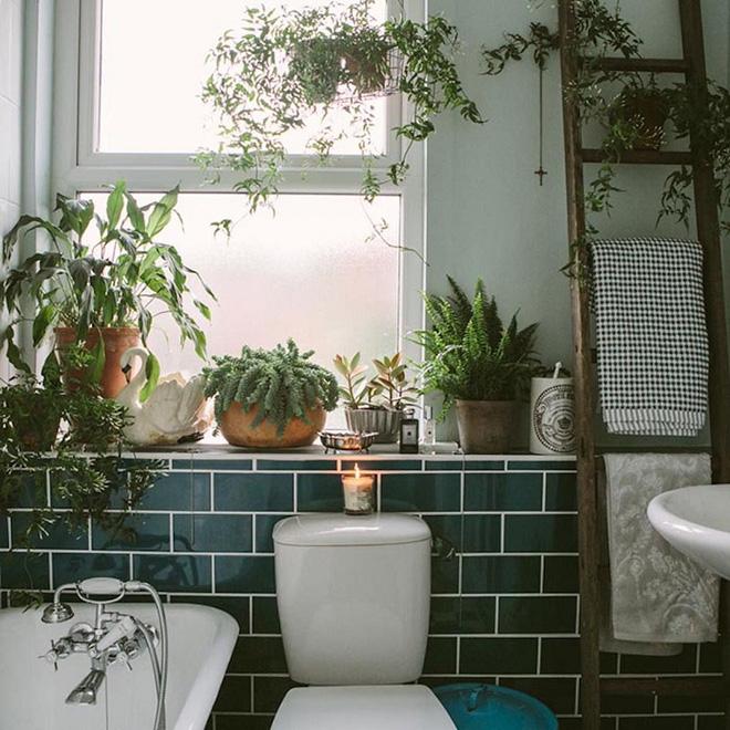 Phòng tắm đẹp hơn bao giờ hết với ý tưởng mang thảm thực vật 9
