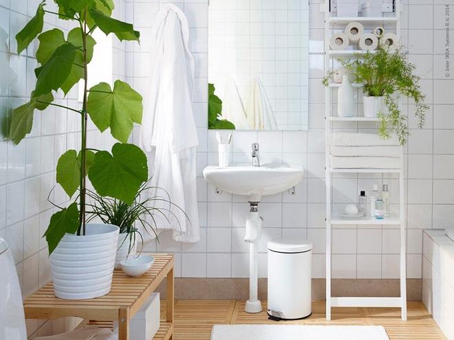 Phòng tắm đẹp hơn bao giờ hết với ý tưởng mang thảm thực vật 2