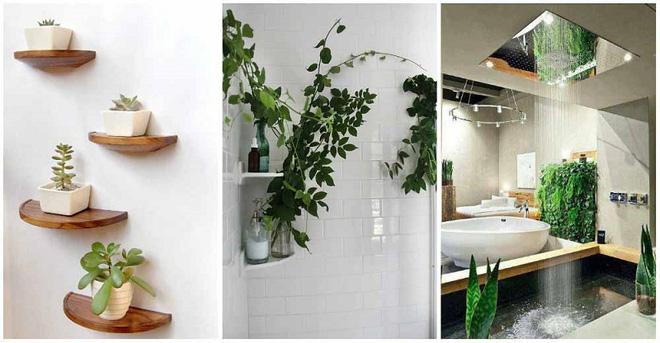 Phòng tắm đẹp hơn bao giờ hết với ý tưởng mang thảm thực vật 4