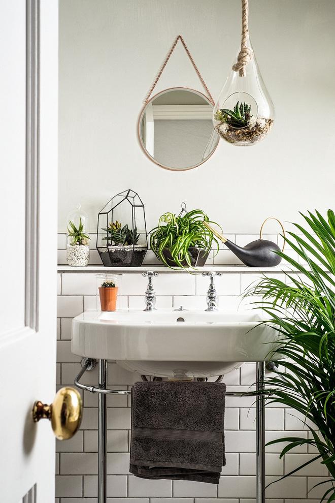 Phòng tắm đẹp hơn bao giờ hết với ý tưởng mang thảm thực vật 6