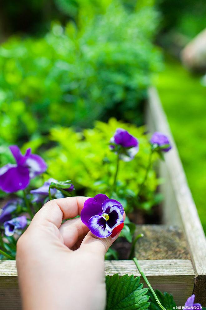 Sân vườn đẹp như mơ với 4 ý tưởng trang trí 10