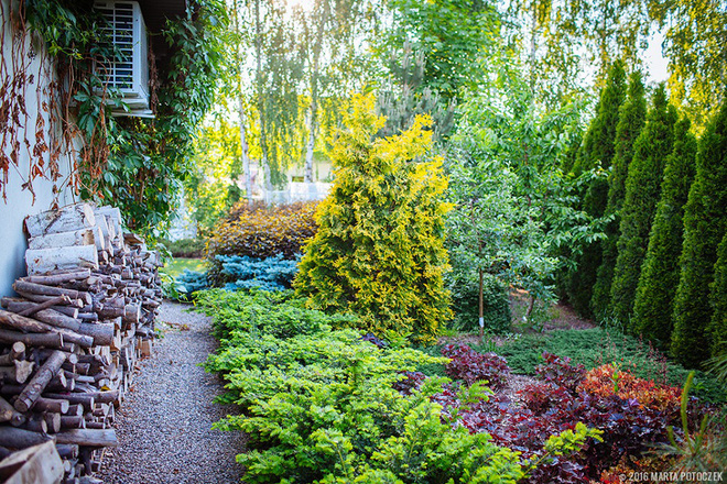 Sân vườn đẹp như mơ với 4 ý tưởng trang trí 11