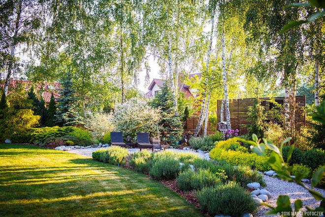 Trang trí vườn đẹp với khu vực ngắm cảnh