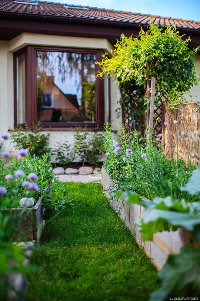Sân vườn đẹp như mơ với 4 ý tưởng trang trí 9