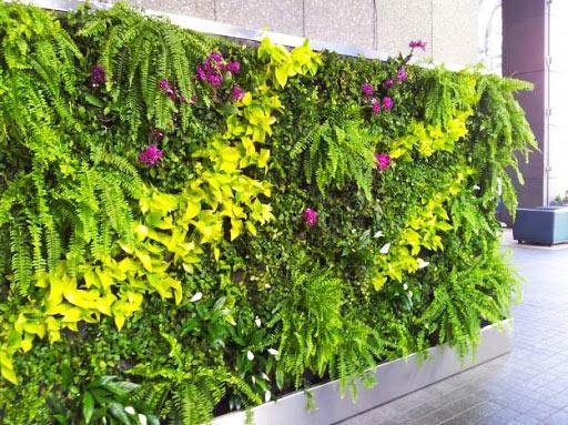 Tường cây giúp nâng cao chất lượng không khí