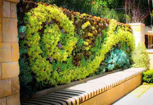 Tường cây xanh tạo ấn tượng cho ngôi nhà đẹp