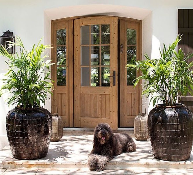 The principles of feng shui door home for the woods owner