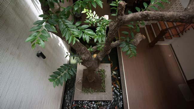 Thiết kế nhà phố đẹp 3 tầng ở Hà Nội (5)
