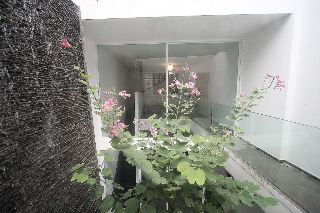 Vườn trên mái nhà phố ở quận 11, Sài Gòn (6)