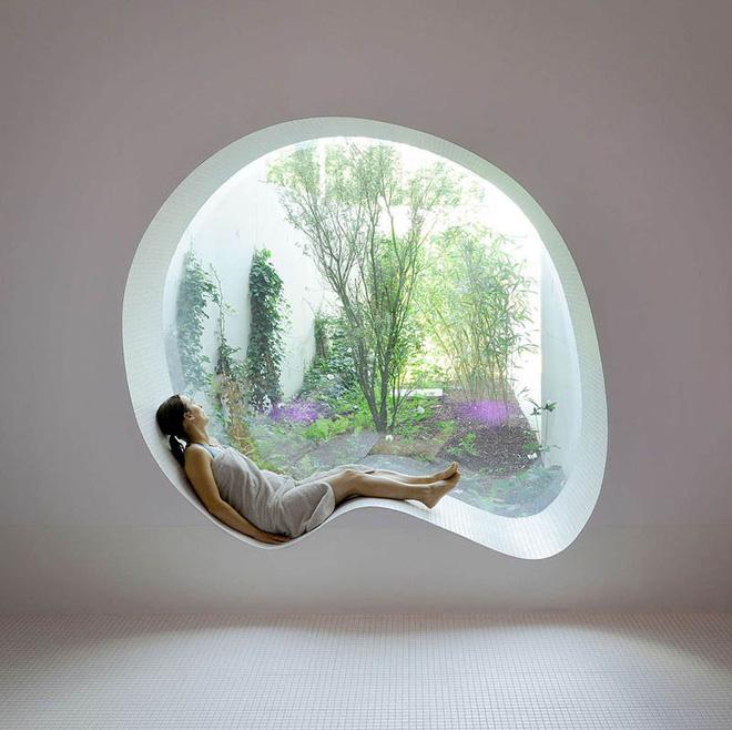 nằm thư thái trên bệ cửa sổ ngắm cảnh sân vườn xanh tươi