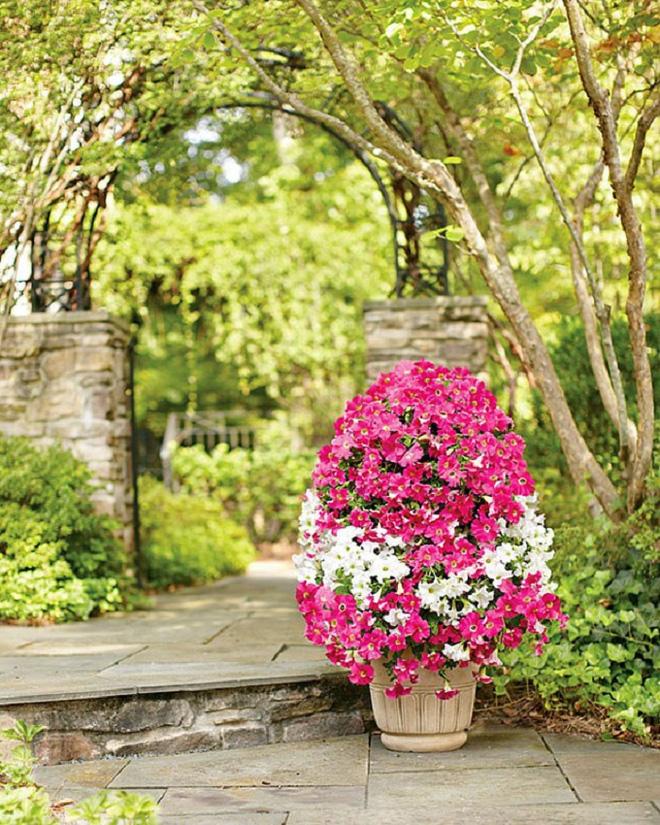 Bí quyết trang trí sân vườn đẹp (1)