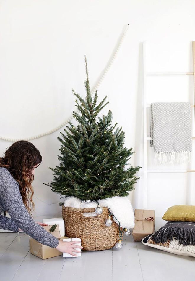 Trang trí cây thông Noel mini với dây đèn nhấp nháy, không phụ kiện