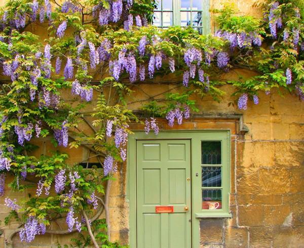 30 ý tưởng trang trí nhà đẹp bằng hoa (15)