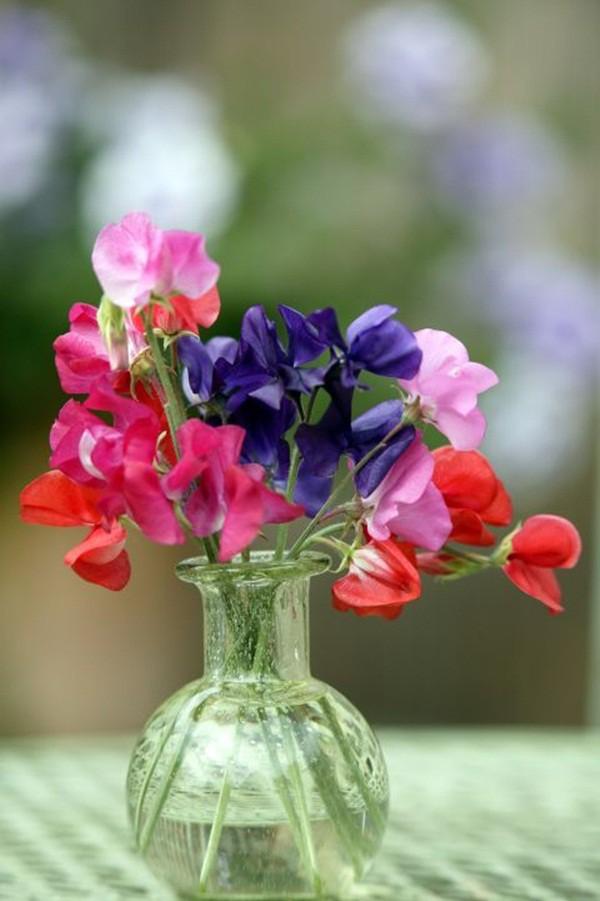 30 ý tưởng trang trí nhà đẹp bằng hoa (19)