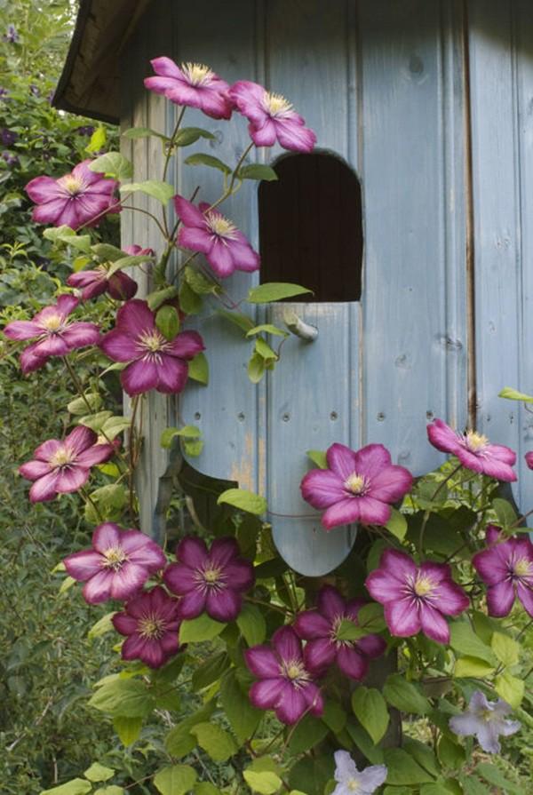 30 ý tưởng trang trí nhà đẹp bằng hoa (25)