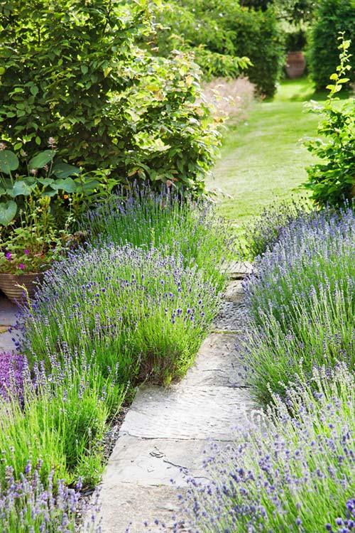 Làm mới sân vườn bằng 18 ý tưởng đơn giản - Nhà Đẹp Số (1)
