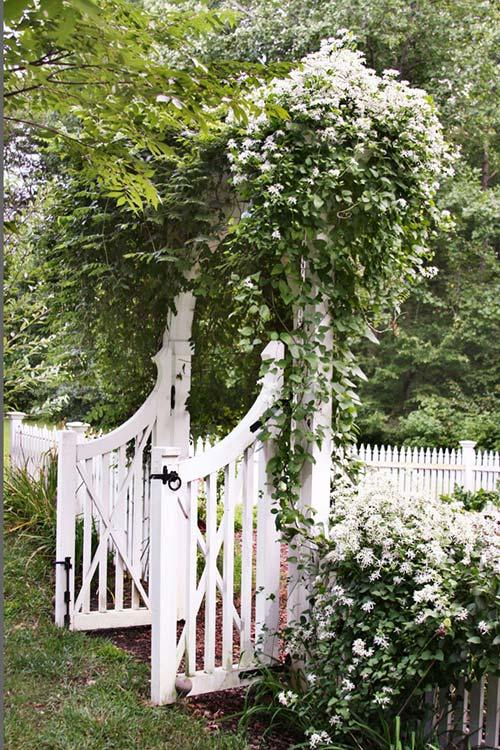 Làm mới sân vườn bằng 18 ý tưởng đơn giản - Nhà Đẹp Số (2)