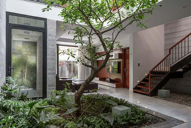Không gian nhà phố ngập tràn cây xanh ở Hà Nội - Nhà Đẹp Số (10)