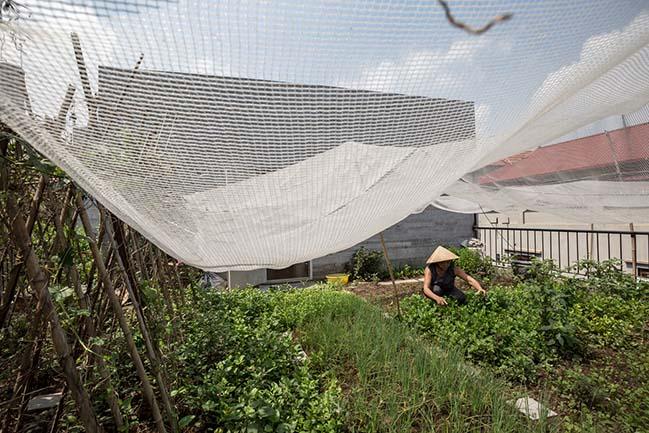 Không gian nhà phố ngập tràn cây xanh ở Hà Nội - Nhà Đẹp Số (22)