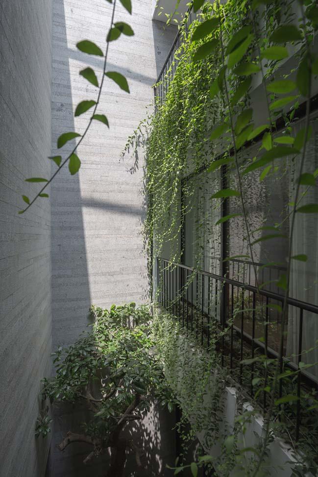 Không gian nhà phố ngập tràn cây xanh ở Hà Nội - Nhà Đẹp Số (5)