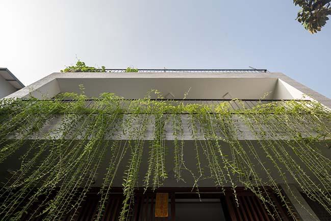 Không gian nhà phố ngập tràn cây xanh ở Hà Nội - Nhà Đẹp Số (7)