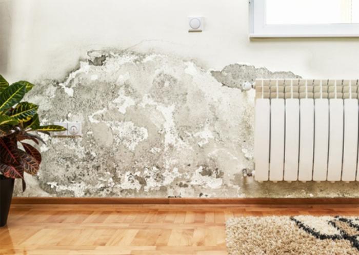 Các mẹo vặt triệt tiêu nấm mốc giúp nhà sạch sẽ, khô ráo mùa nồm - Nhà Đẹp Số (2)