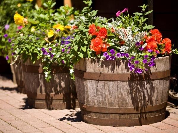 Muôn kiểu trang trí sân vườn bằng thùng rượu cũ - Nhà Đẹp Số (2)