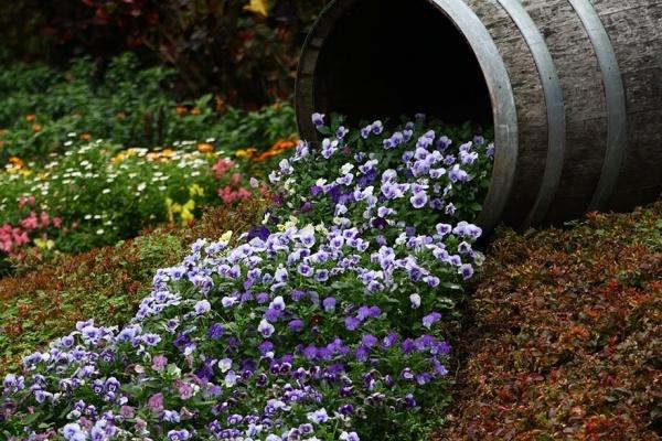 Muôn kiểu trang trí sân vườn bằng thùng rượu cũ - Nhà Đẹp Số (4)