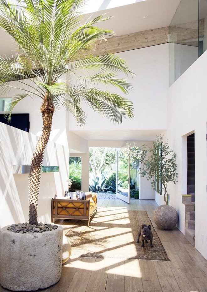 7 mẹo nhỏ giúp không gian nhà đẹp thêm trong lành, thanh sạch - Nhà Đẹp Số (1)