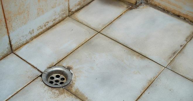 Mẹo làm sạch gạch ốp nhà tắm bằng dung dịch vệ sinh tự chế - Nhà Đẹp Số (1)
