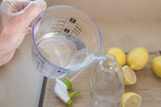 4 mẹo vặt khử mùi nước tiểu chó mèo với các nguyên liệu sẵn có - Nhà Đẹp Số (2)