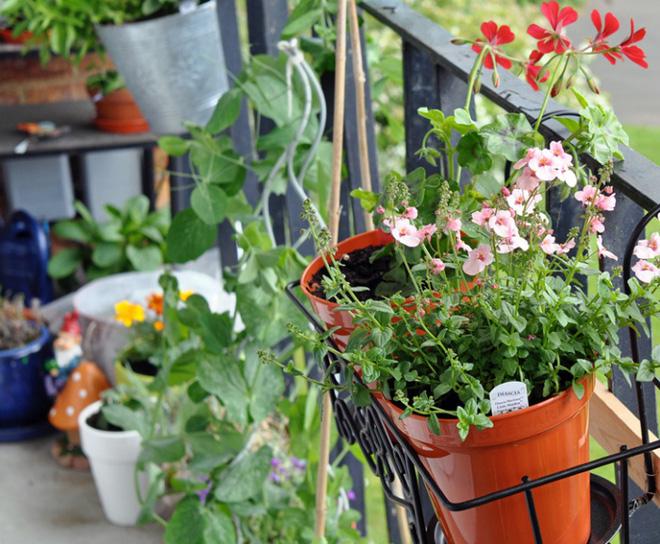 Trang trí ban công bằng hoa tươi - ý tưởng chưa bao giờ lỗi mốt - Nhà Đẹp Số (3)