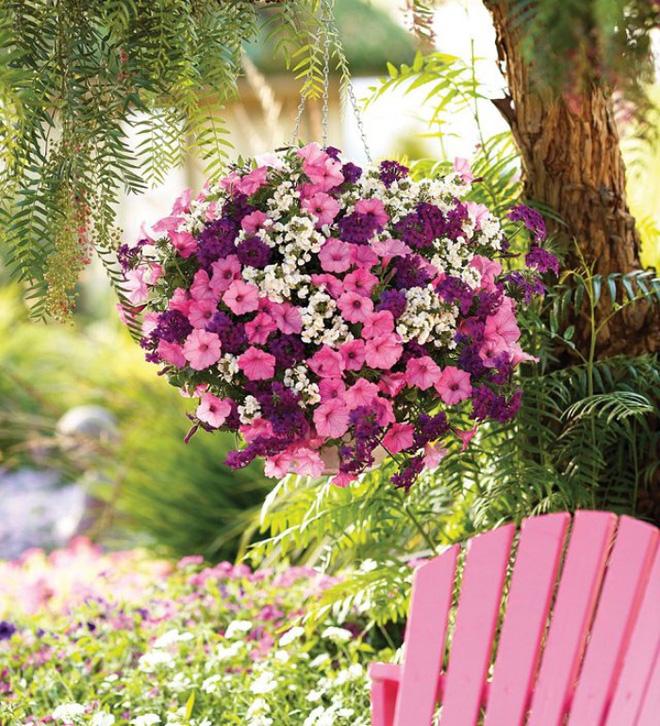 Trang trí ban công bằng hoa tươi - ý tưởng chưa bao giờ lỗi mốt - Nhà Đẹp Số (4)