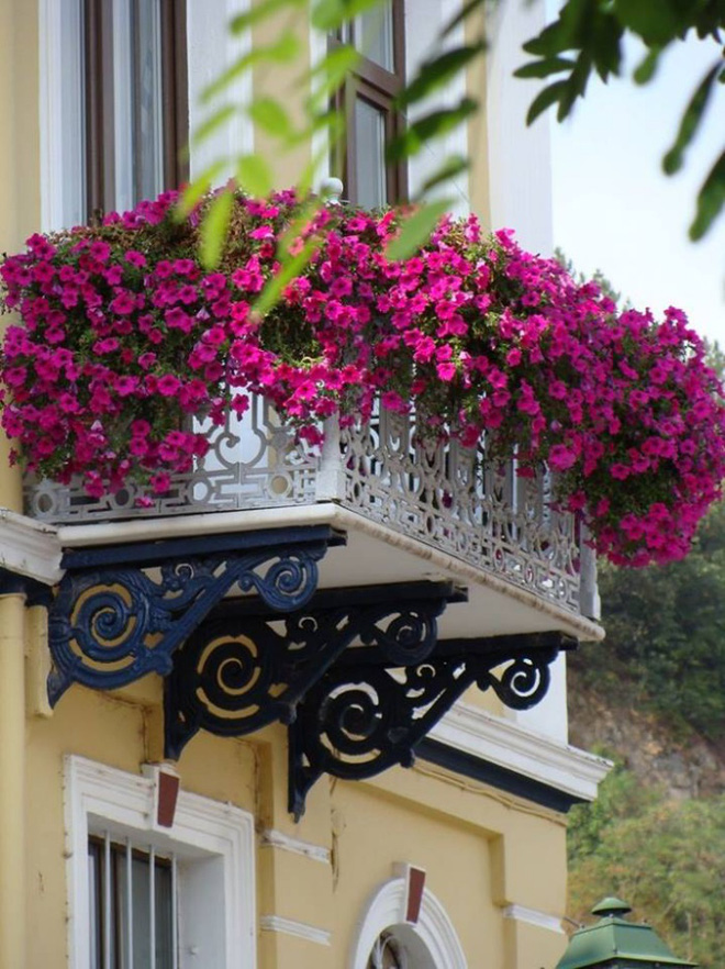 Trang trí ban công bằng hoa tươi - ý tưởng chưa bao giờ lỗi mốt - Nhà Đẹp Số (6)