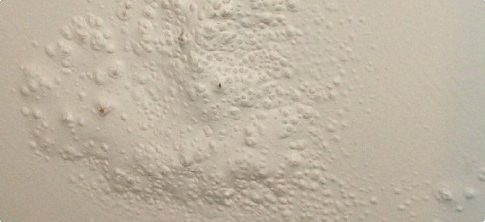 Bọt khí xuất hiện sau khi sơn