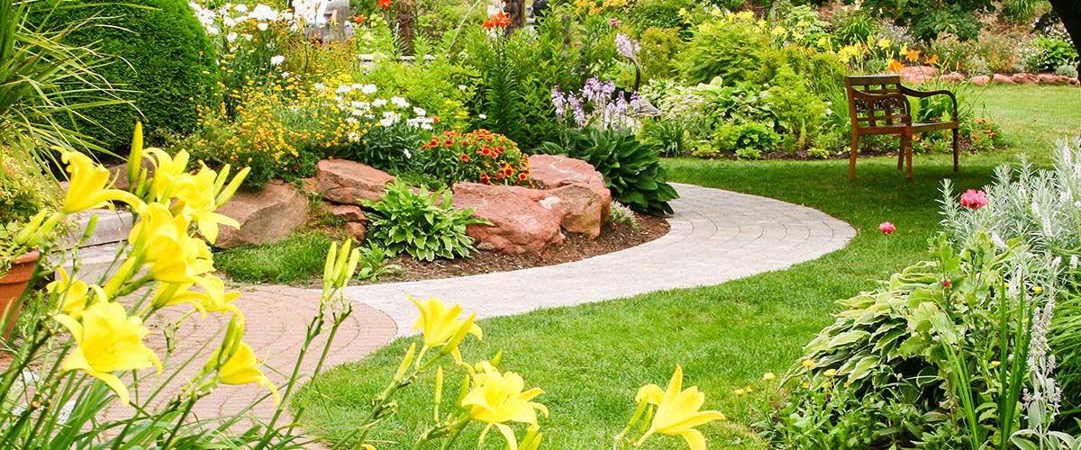 công ty thiết kế sân vườn cảnh quan