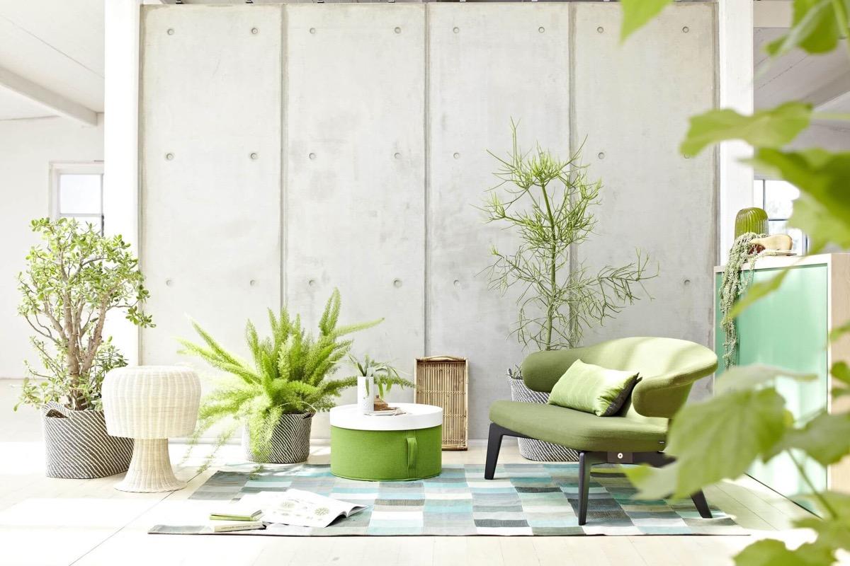 mẫu phòng khách sử dụng màu xanh lá cây của cây xanh