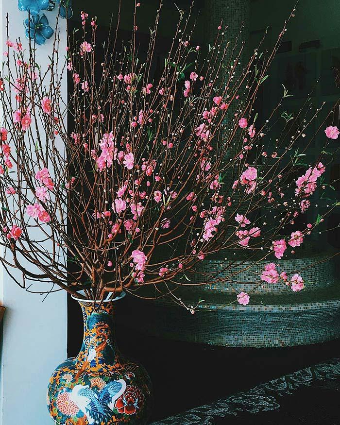 Hoa đào loài hoa biểu tượng tết cổ truyền ở miền Bắc.