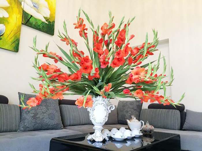 Hoa lay ơn là loại hoa trưng Tết ưu chuộng, mang ý nghĩa may mắn, bình an cho dịp đầu năm mới